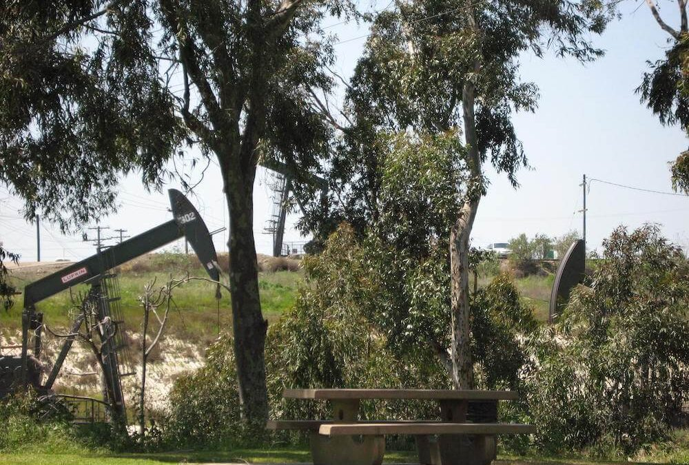 oil well and picnic
