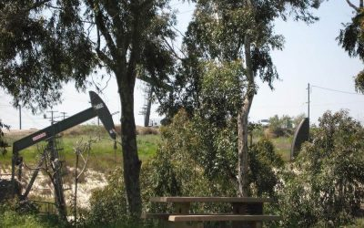 Learn More About the Inglewood Oil Field Complaint Process